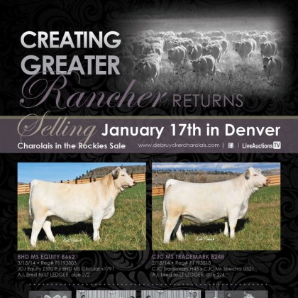 Charolais of the Rockies Sale